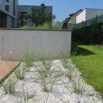 okrasné trávy v zahradě