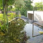 Biotop a vodní rostliny